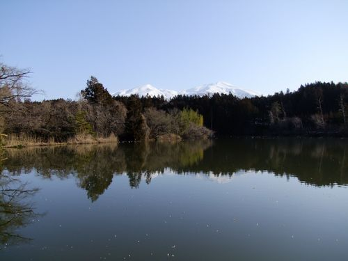 宮山坂公園