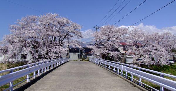 桜の尻引橋