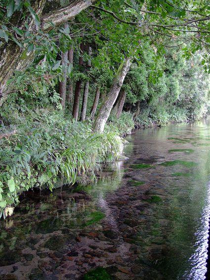 八月の牛渡川