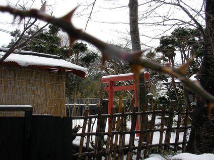 雪解けの雫