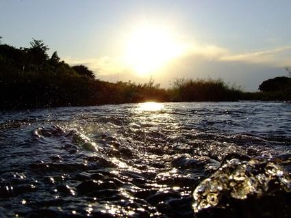 秋景川端夕暮れ散歩
