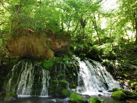 元滝伏流水の初夏