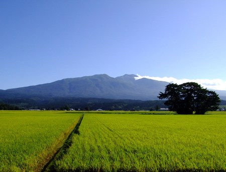 今朝の鳥海山♪