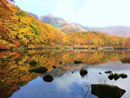 紅葉の鶴間池