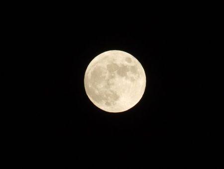 満月は明日ですが・・・