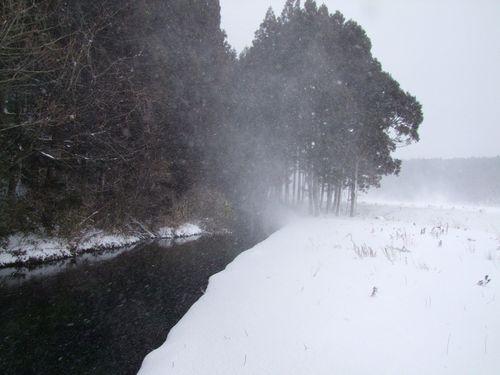二月の牛渡川