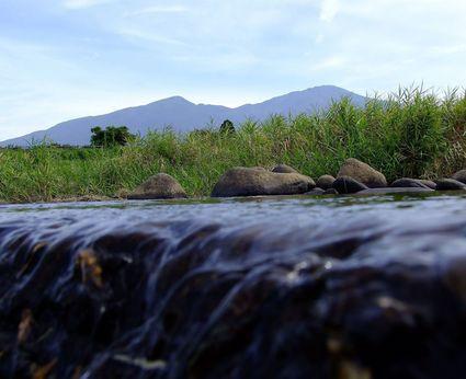 朝の散歩 ~そして川遊び~