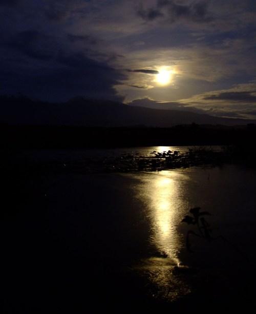 満月(つき)に叢雲(むらくも)・・・