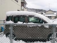 雪が降った、重い雪だ、ビッグチャンスだ