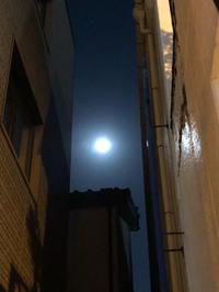 月明かり〜〜ヘU・x・U ワン♪