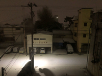 雪の降る今朝Σ('◉⌓◉')