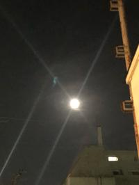 十三夜のお月さん(●´ω`●)