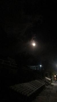 満月の朝(▰˘◡˘▰)