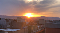 陽はまた昇る(╹◡╹)