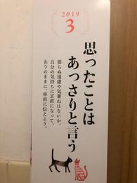 今日から仏壇のさとうは開店╰(*´︶`*)╯♡