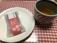 菓匠菊池さんの桜羊羹♡✧。(⋈◍>◡<◍)。✧♡