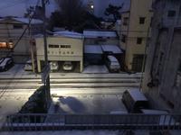 薄っすら雪の朝(▰˘◡˘▰)