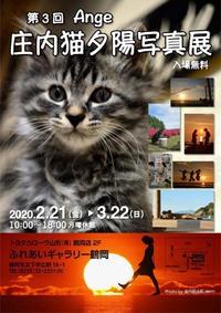 延長!第3回Ange庄内猫夕陽写真展