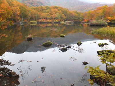 秋の鶴間池