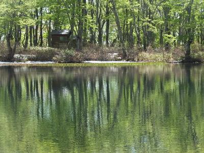 鶴間池一周