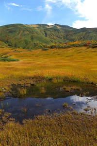 鳥海山「草紅葉」