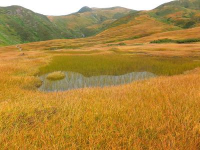 鳥海山、千畳ケ原「草紅葉」