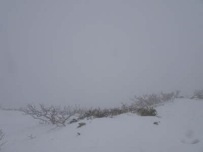 鳥海山「天主森」