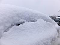 本格的な冬に