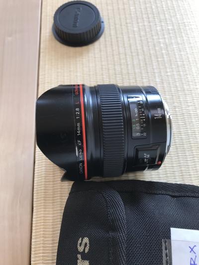 プロのカメラマンによる写真撮影
