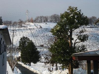山形の老舗ワイナリー「タケダワイナリー(竹田ワイナリー)」の工場見学