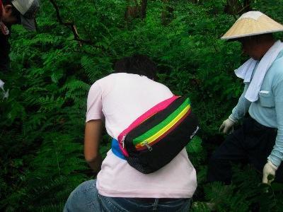 笠をかぶっているのが新庄の山を知りきった山菜採りの巨匠