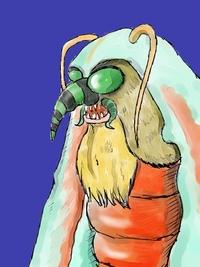 ▼エイドクガー▼海鷂魚毒蛾