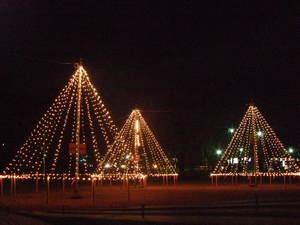 鶴岡公園ライトアップ