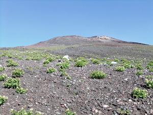 富士山 大砂走り