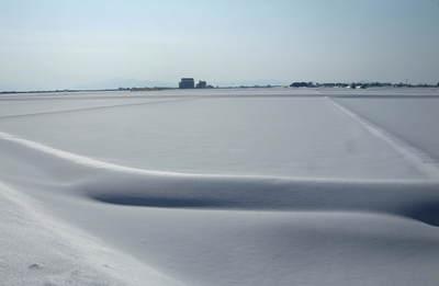 のどかな冬景色