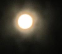 満月と拾った自然