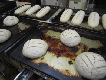 国産小麦粉&天然酵母のパン創り研修