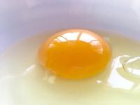 「生体エネルギーのおいしい卵」入荷です!ムシムシするこの時期はカビにご注意くださいね~