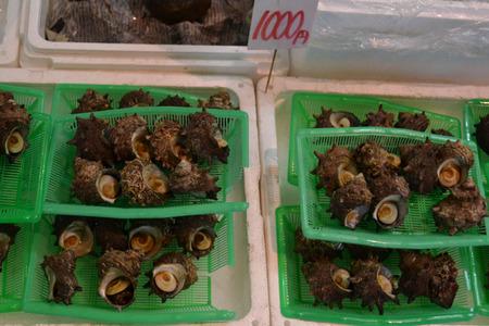 海鮮市場サザエ