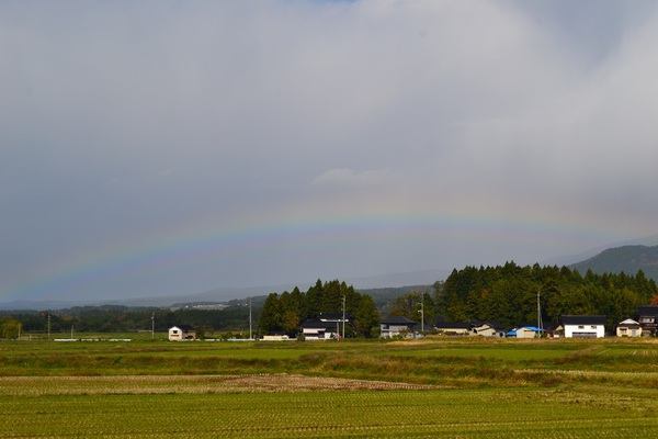 虹とニョロちゃん