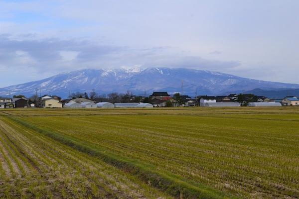 大多新田と鳥海山