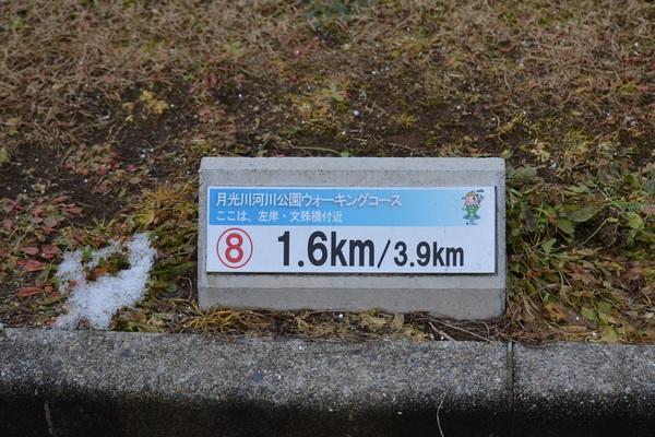 初冬の月光川河川敷遊歩道