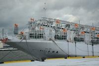 最新式イカ釣り船?