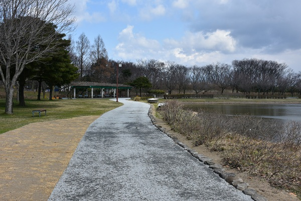 白鳥池遊歩道完成