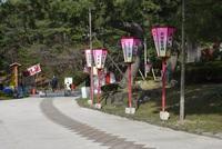 日和山公園桜まつり