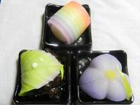 鶴岡木村屋の初夏の上生菓子
