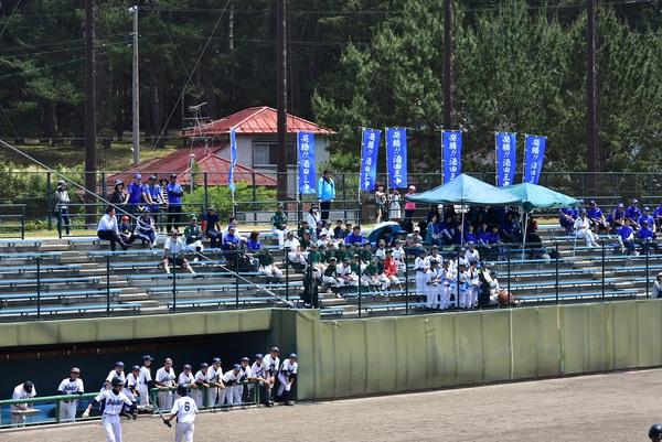 中体連野球観戦