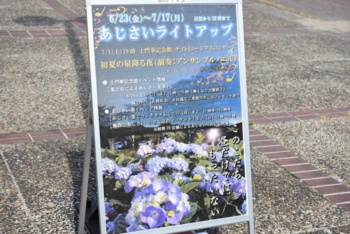 飯森山公園で本日あじさいマルシェ開催