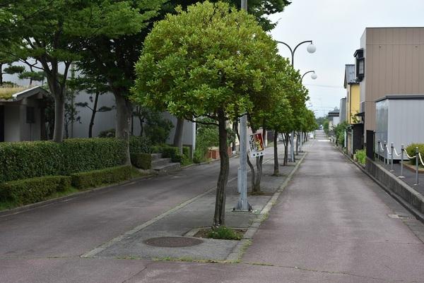 酒田市大通り緑地公園