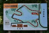 松山地区 宝蔵寺椿根堤の水連